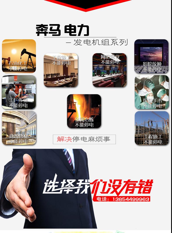 发电机组250KW|奔马动力潍柴系列柴油发电机组-潍坊奔马动力设备有限公司