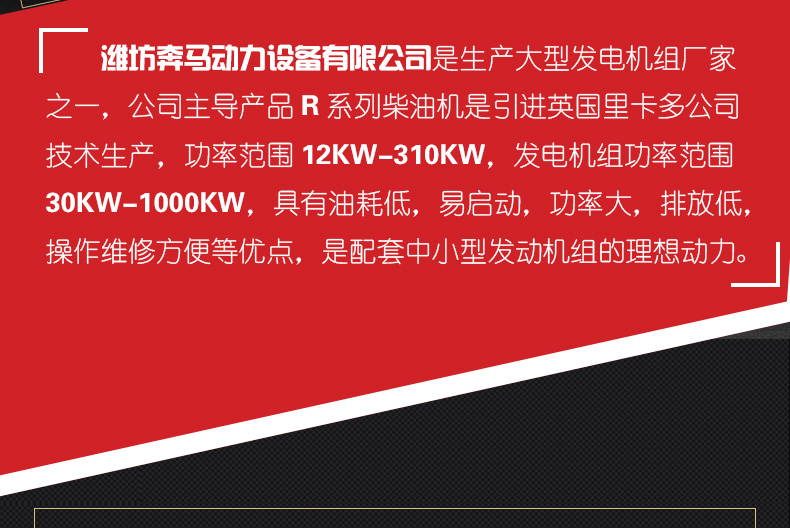 发电机组200KW|奔马动力潍柴系列柴油发电机组-潍坊奔马动力设备有限公司