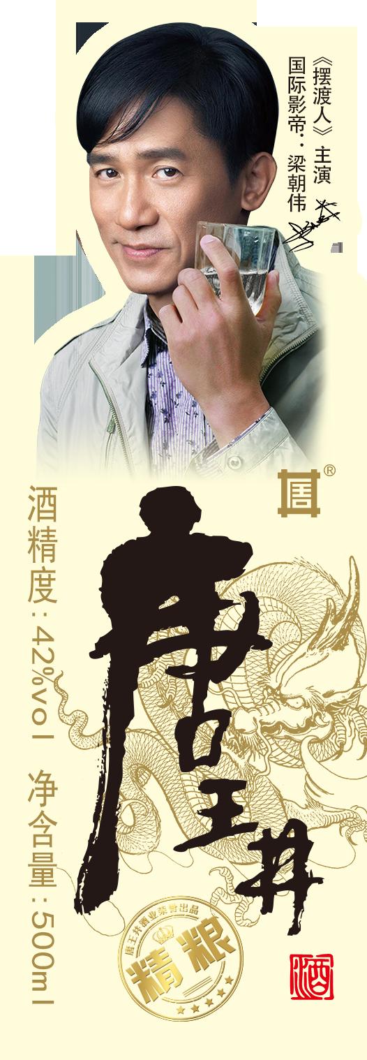 唐王井標 定 - 梁朝偉====PDF.png