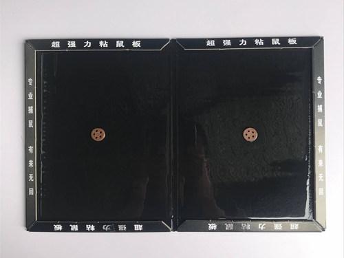 QQ图片20180728100114_副本.jpg