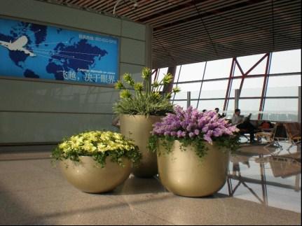 机场花器.jpg