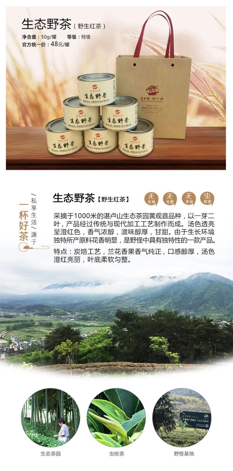 生態野茶-詳情頁_01.jpg