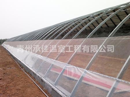 蔬菜溫室大棚建設.jpg