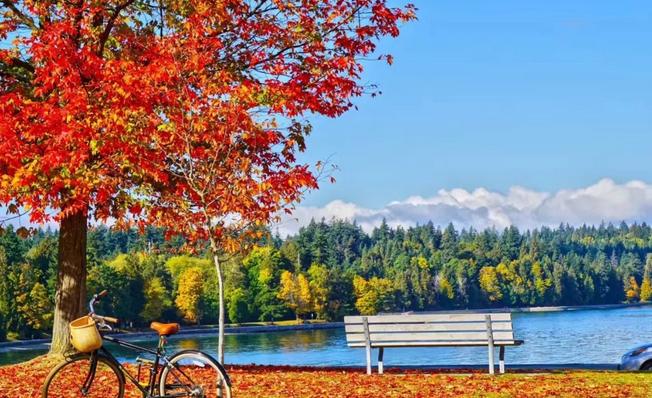 加拿大秋天的童話