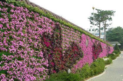 生态植物墙和仿真植物墙哪种比较好