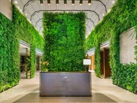 植物墙设计施工中常常犯的几点过错