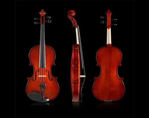 鳳靈小提琴14-亮光.jpg