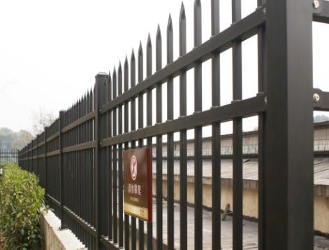 围墙6.jpg