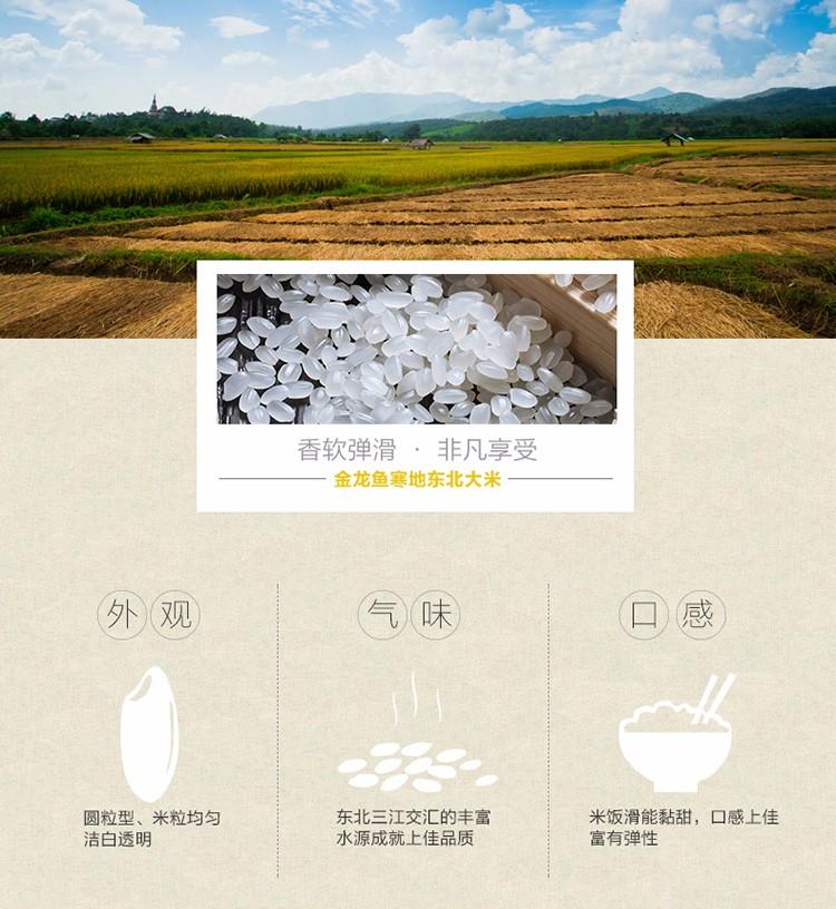 金龙鱼寒地香大米5KG 金龙鱼系列-郑州鑫瑞粮油食品有限公司