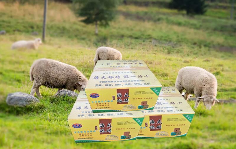 牛羊舔块标准型