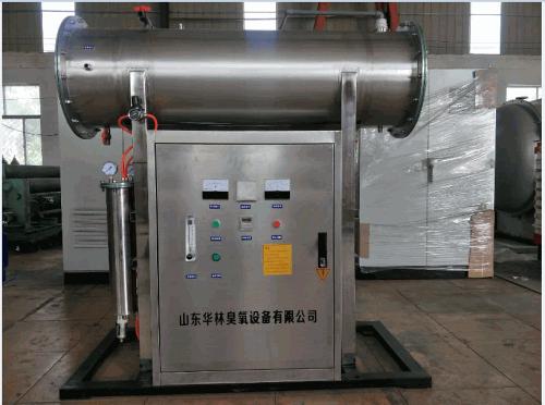 100g食品厂臭氧发生器规格介绍.png