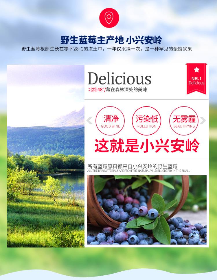 藍莓酒—泡酒|藍莓果酒系列-伊春市山野飲品有限公司