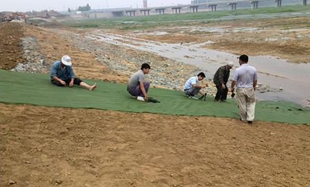 生态毯|其他土工产品-山东领翔新材料有限公司|