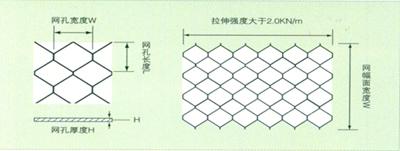 土工网1.jpg