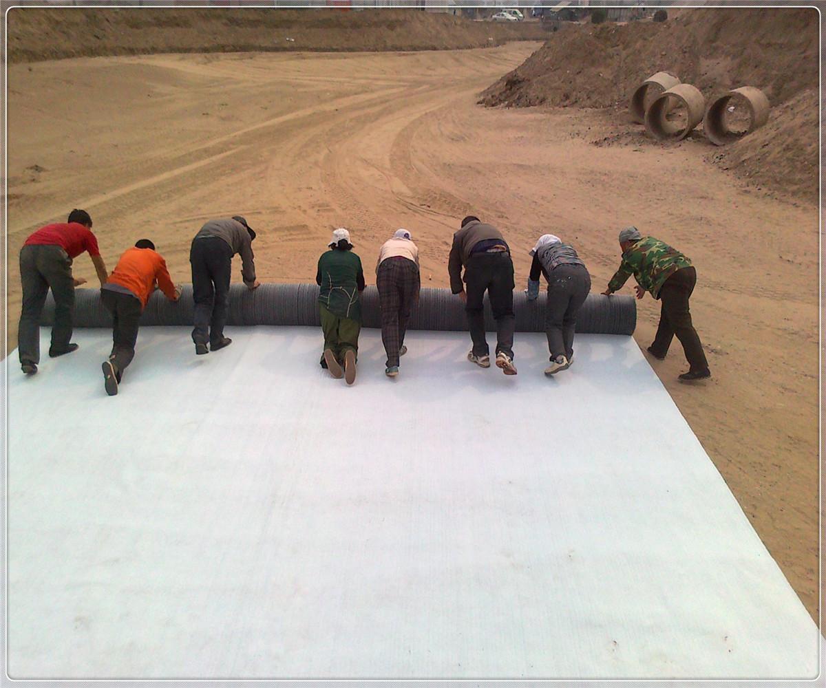 生态型膨润土防水毯2.jpg