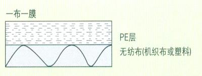 一布一膜1.jpg