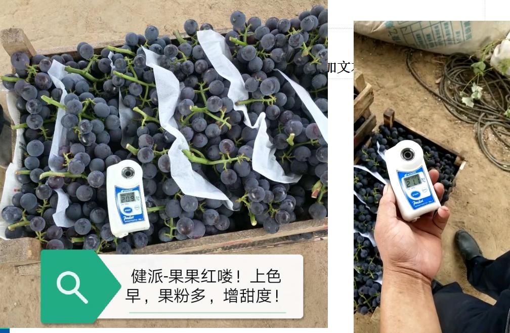 健派--果果红喽|健派叶面肥-南阳市益生源肥业有限公司
