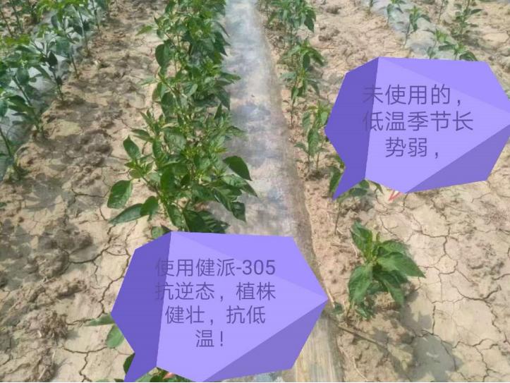 健派-抗逆态|健派叶面肥-南阳市益生源肥业有限公司