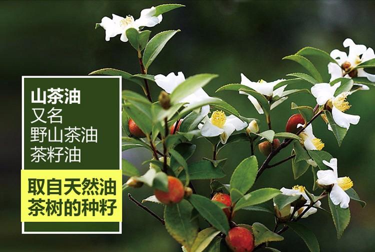260ml规格|260ml规格-广东康帝绿色生物科技有限公司