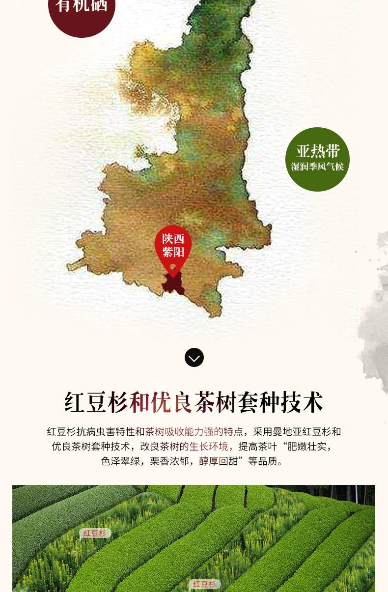 红豆杉生态富硒绿茶|富硒茶系列-新疆11选5走势图