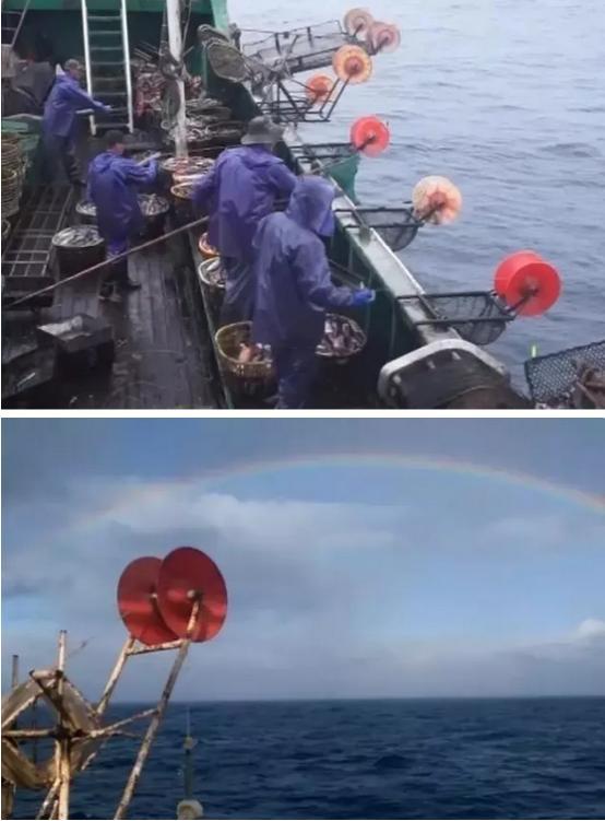 遠洋漁業秘魯行|新聞資訊-寧波蔚藍漁業有限公司