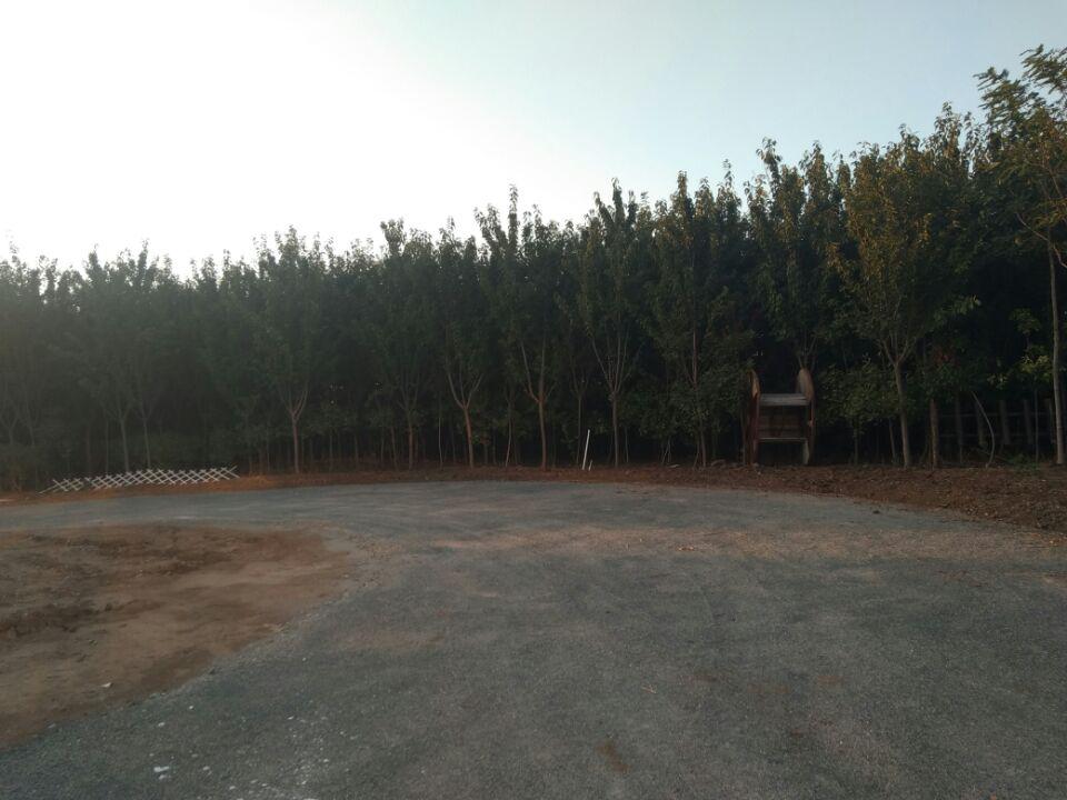 云南土壤固化剂修筑建筑垃圾处理陕西生态环境保护道路|土壤抗疏力稳定技术-杭州抗疏力新材料环保科技有限公司