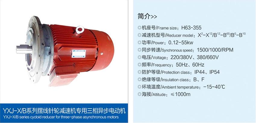 擺線針輪減速機專用三相異步電動機.jpg