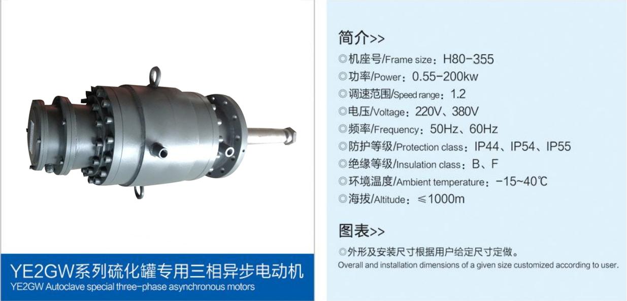硫化罐專用三相異步電動機.jpg