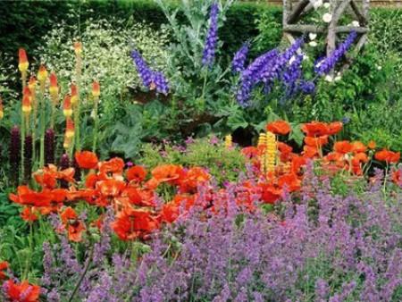 雅居樂一庭院花境|庭院花境工程-四川陌上花開花境園藝有限公司