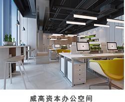威高資本辦公空間.jpg