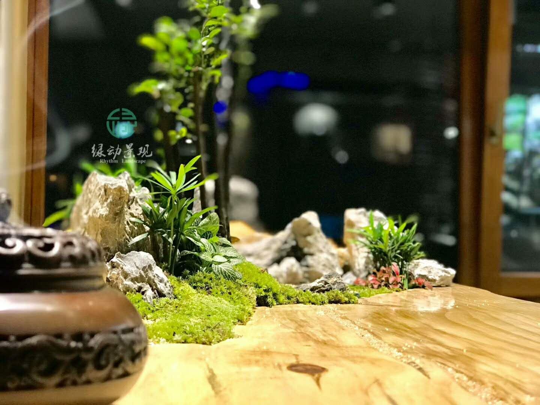 青岛垂直绿化