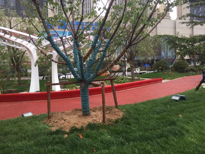 红色玻璃钢弧形休闲凳