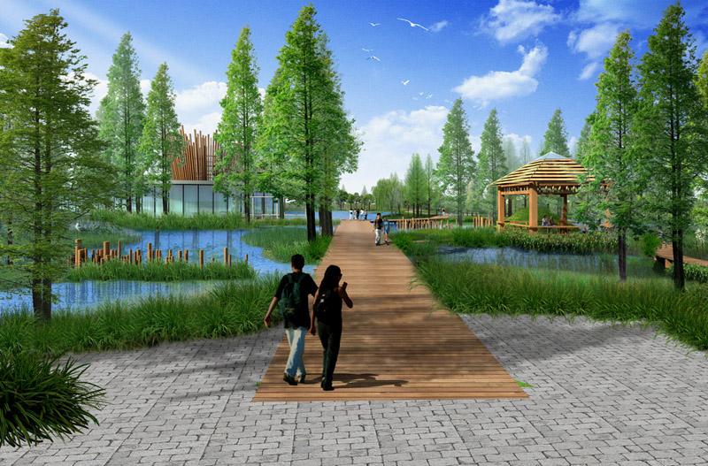 濕地公園景觀