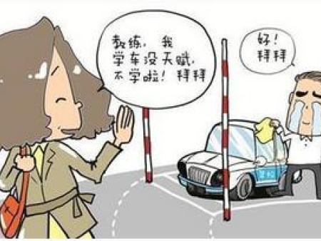 学车考驾照