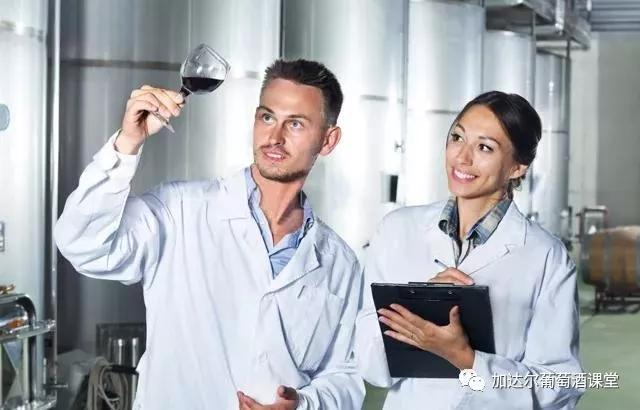 烟台有机葡萄酒
