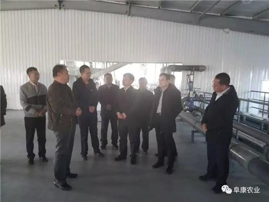 青海看球宝nba直播官网料