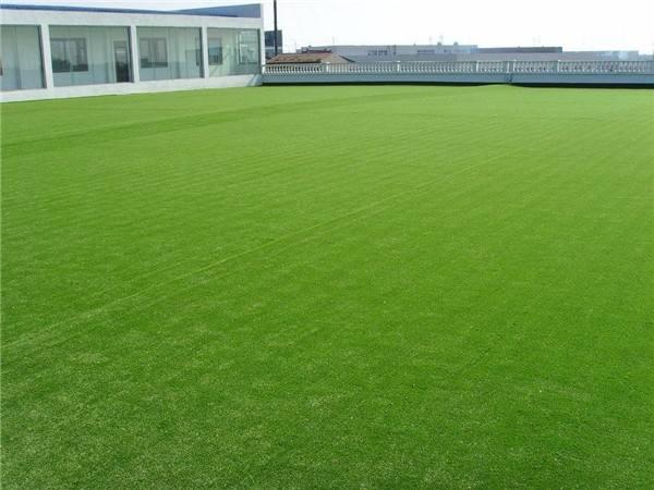 惠州人造草皮球场施工