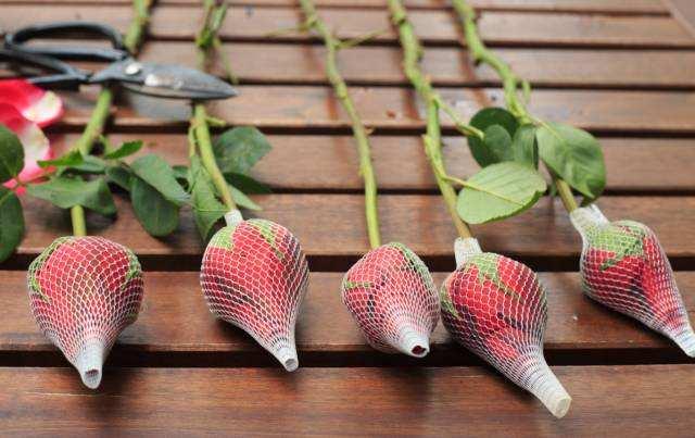 玫瑰花网套