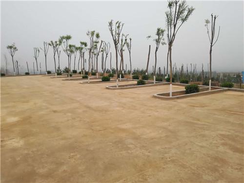 土壤固化剂