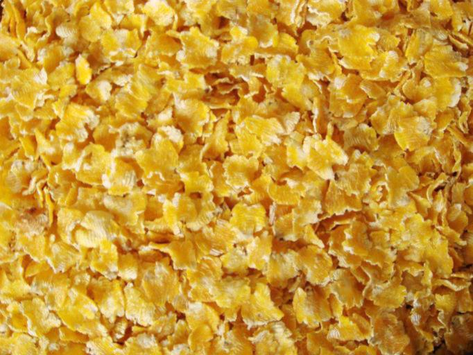 小型玉米压片机压片玉米的使用效果
