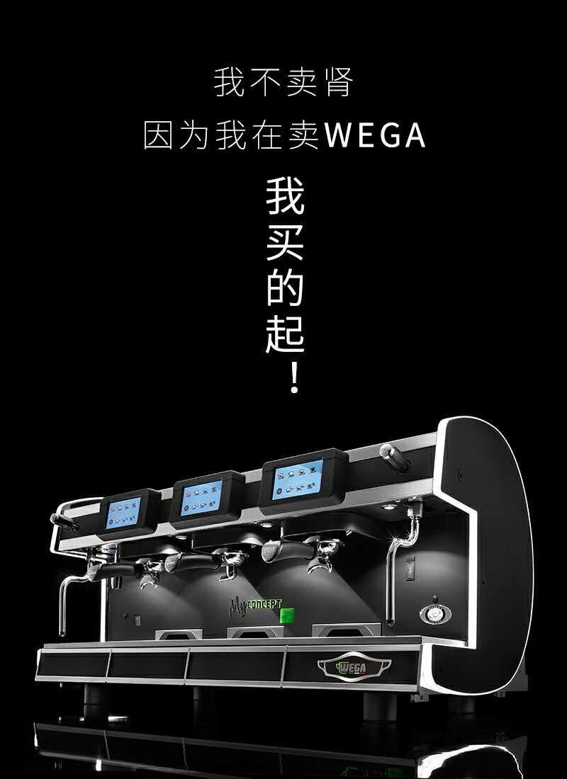 广西WEGA旗舰机