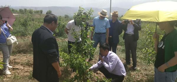我公司的王景周、朱文波老师,受青海省科协邀请到青海省各地区做实地的果树种植及病虫妨害的指导