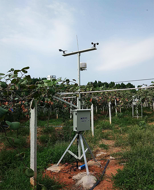 水肥一体化技术模式试点项目