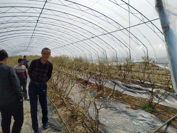 2019年 農業技術培訓