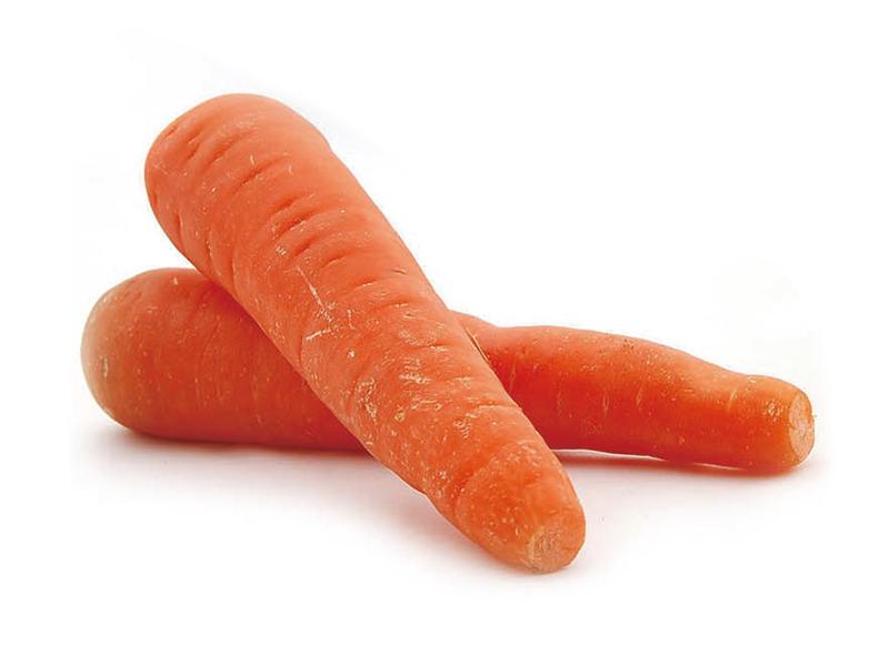 山东胡萝卜