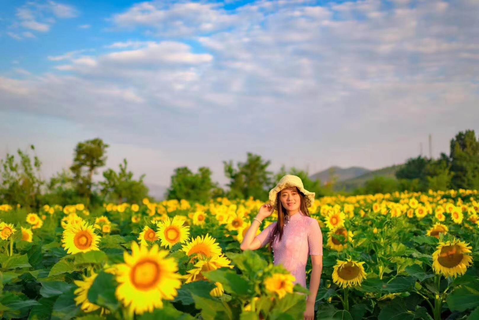 青州杏花村度假区