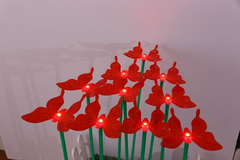 红蝴蝶插地灯