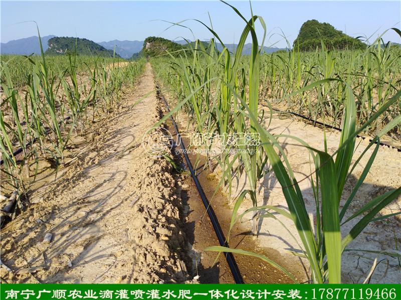 水肥一体化灌溉设备