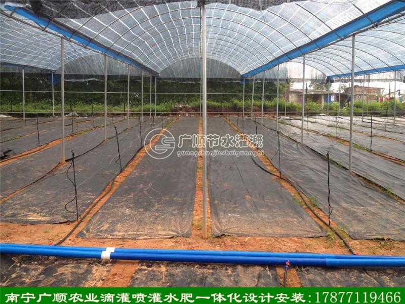 农业大棚配套滴灌系统安装