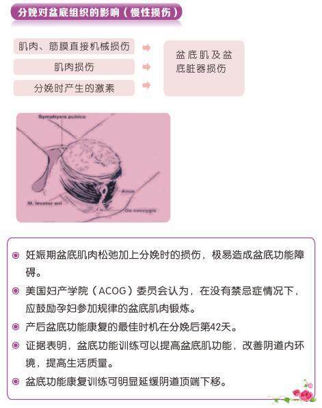 产后盆底肌修复治疗仪